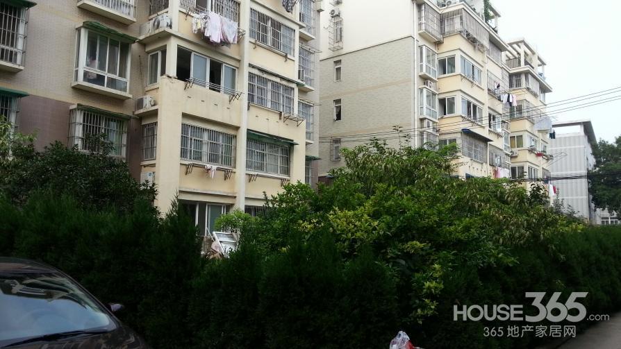 五十中 文馨园 两室两厅 小区环境佳 南北通透 科大西区对面