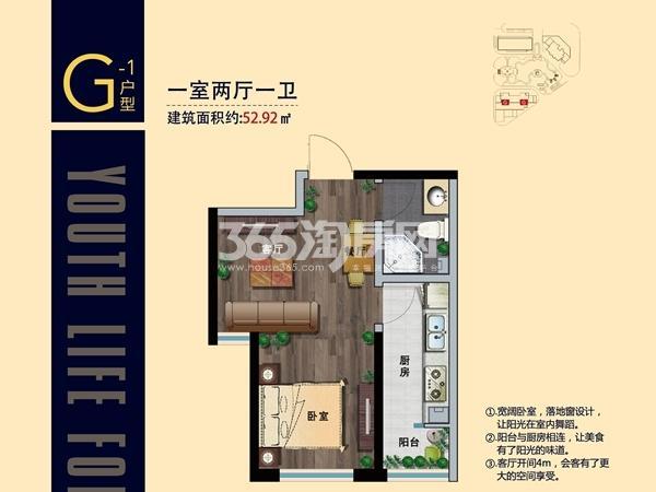 中集青春里G-1户型  一室两厅一卫-52.92㎡