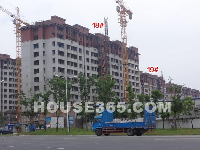 高科荣境在建楼栋实景图(6.18)
