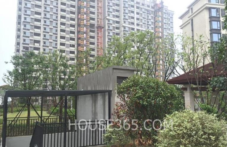 银亿东城十街区的洋房实景图(7.19)