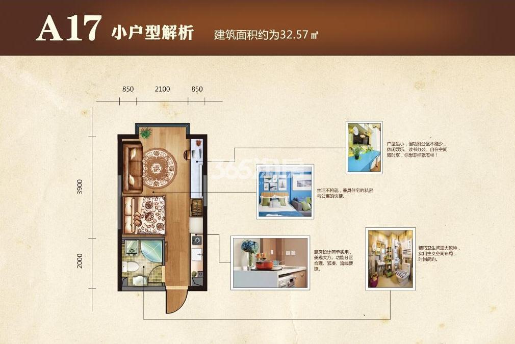 太湖国际花园A17户型1室1厅1卫32.57㎡