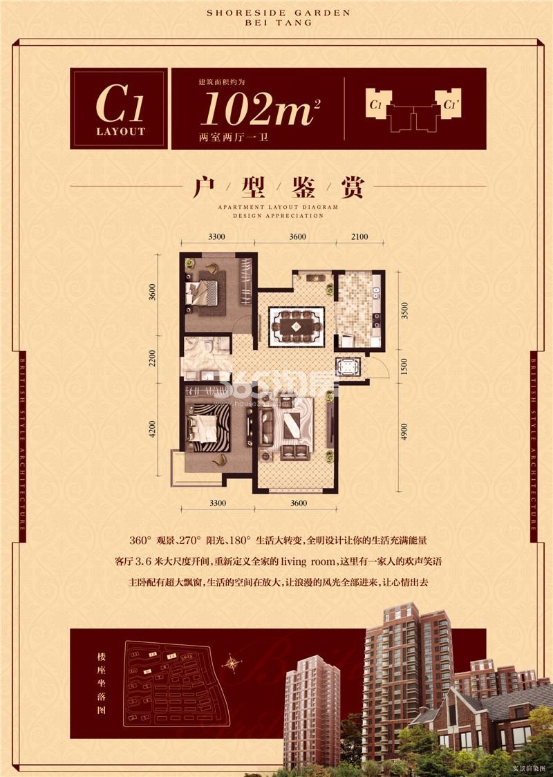 C1户型 两室102平米