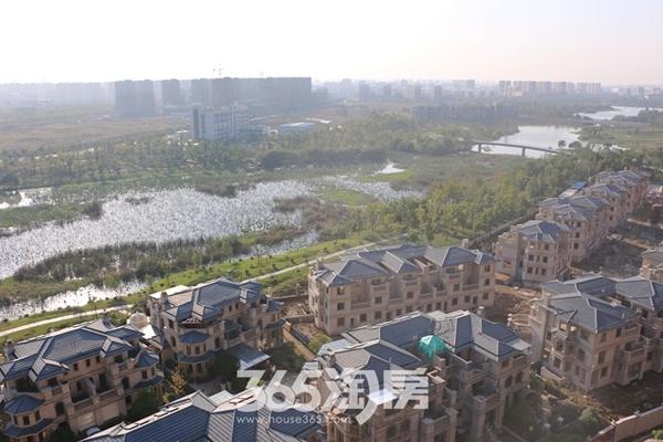鸿瑞熙龙湾实景图(2016年11月份摄)