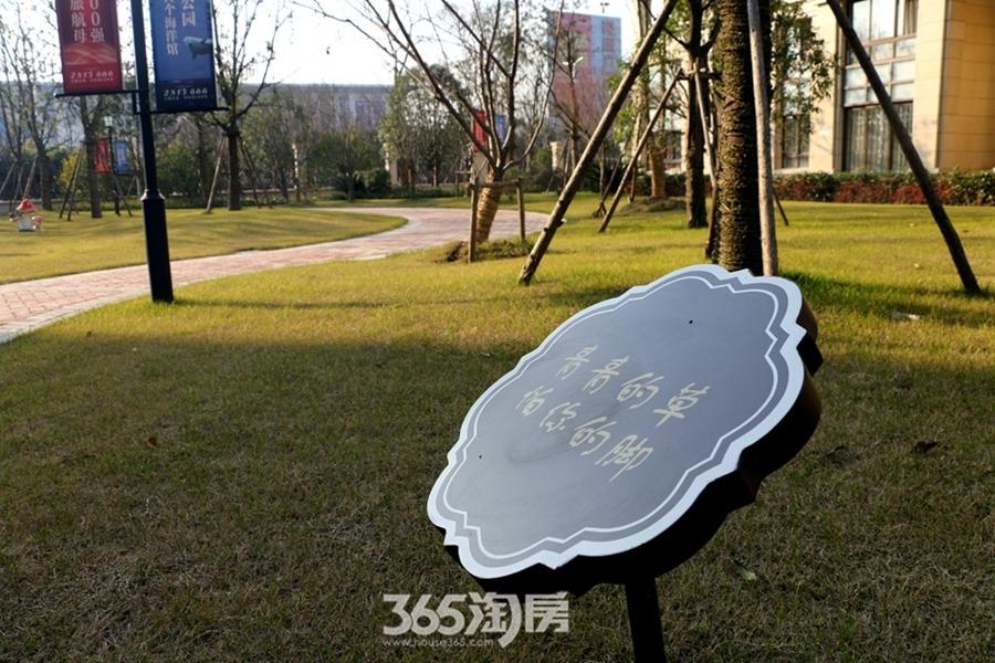 新华联梦想城小区景观(2017.2摄)