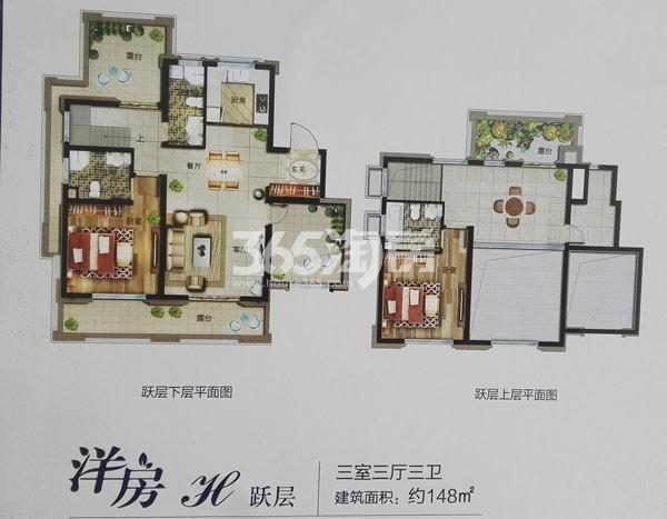 洋房H户型跃层148㎡三室三厅三卫