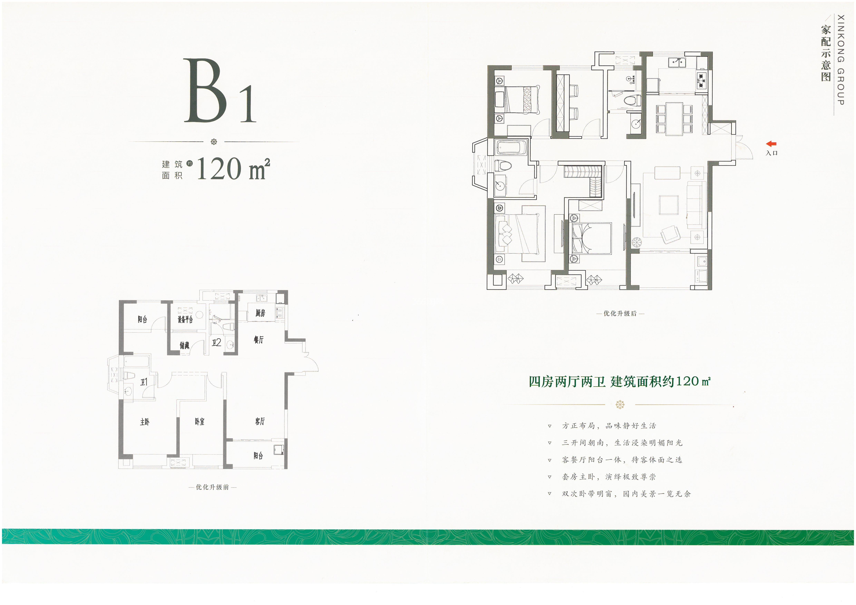 B1户型 建筑面积约120㎡