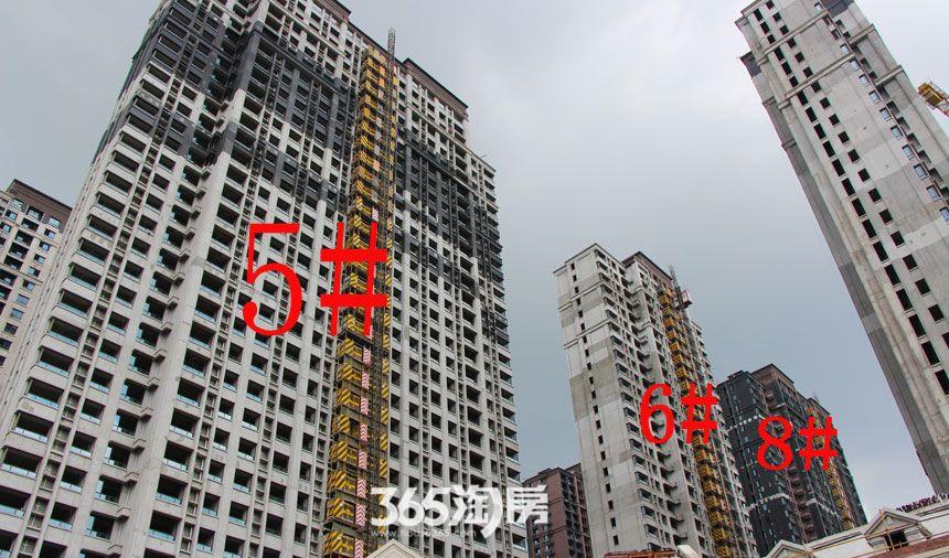 华邦观筑里5、6、8#楼工程进度(2017.8)