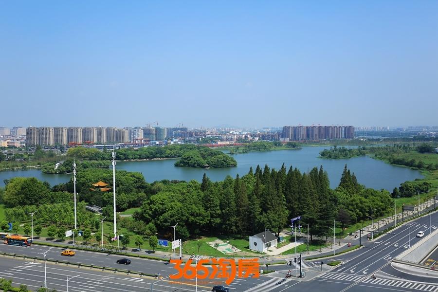汀棠公园实景