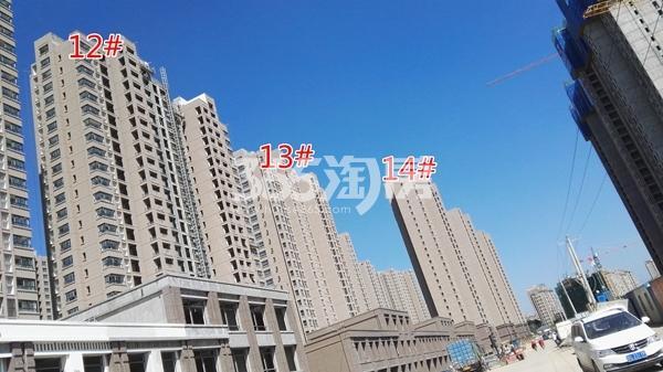 荣盛花语城云锦一期A12-14#工程实景图(9.14)