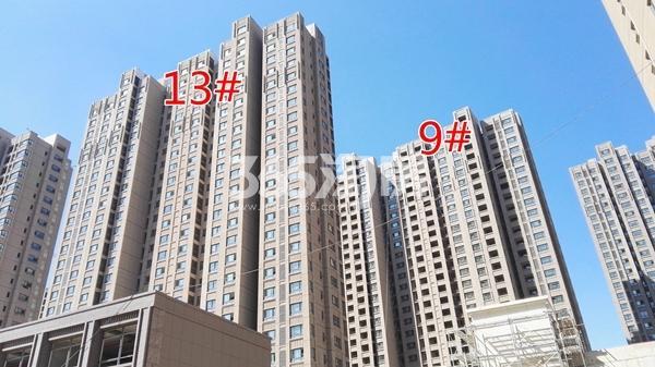 荣盛花语城云锦一期A9、13#工程实景图(9.14)