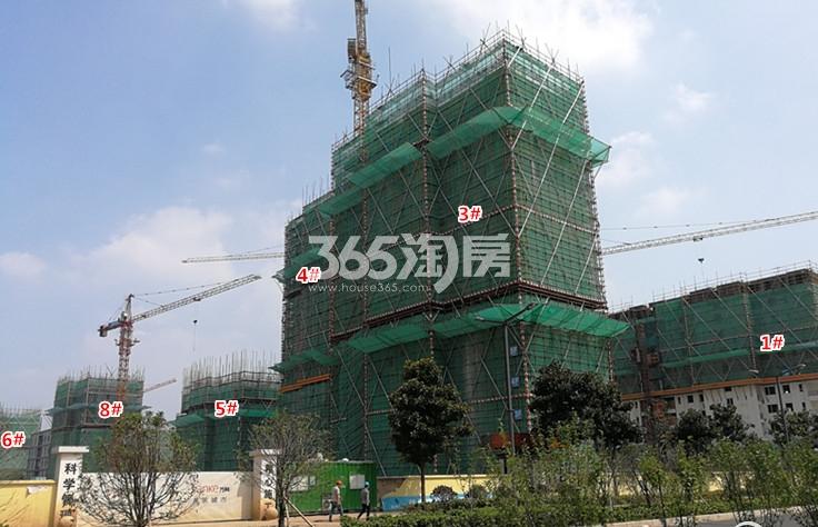 万科大都会在建楼栋施工图(9.19)